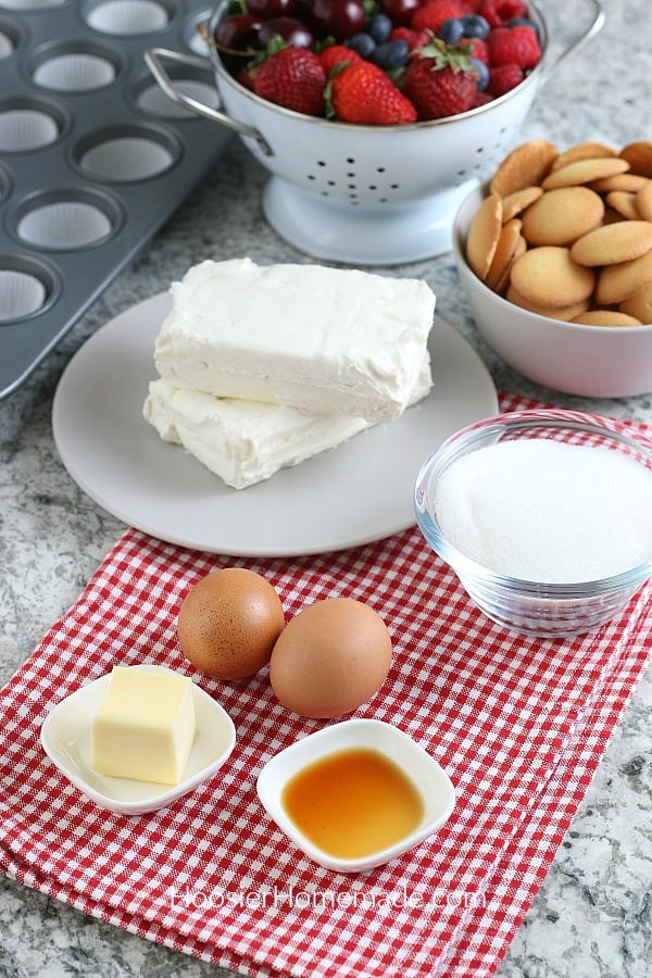 Ingredients for Mini Cheesecake Recipe