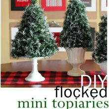 Mini-Topiaries1.220