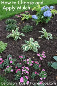How to choose and apply mulch