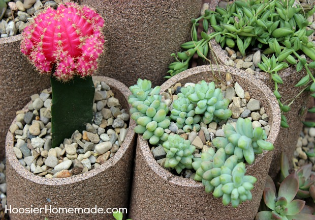 Merveilleux How To Build And Plant A Succulent Garden :: Instructions On  HoosierHomemade.com
