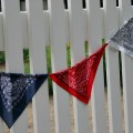 Patriotic-Bandana-Banner.1