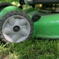 Pennington-Seed.mower