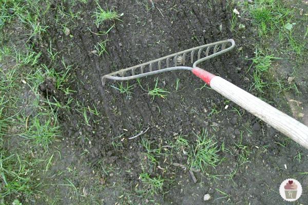 Landscape Rake For Seeding : Tips for reseeding a lawn hoosier homemade
