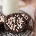 Peppermint Chocolate Chipsters : 100 Days of Homemade Holiday Inspiration on HoosierHomemade.com