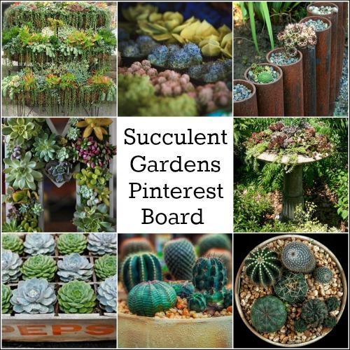 Pinterest Succulent Garden