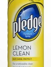 Pledge-175
