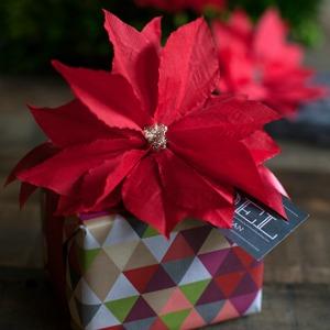 Poinsetta Gift :: HoosierHomemade.com