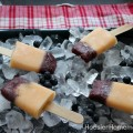 Homemade Fresh Fruit Popsicles :: Recipe on HoosierHomemade.com