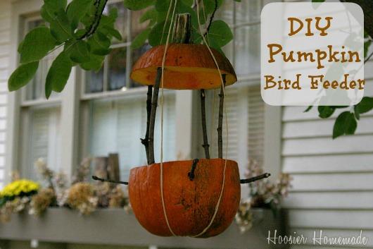 Diy Pumpkin Bird Feeder And Bath