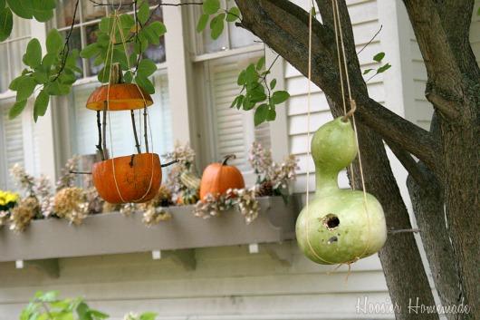 Making A Pumpkin Bird Feeder