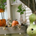 Pumpkin-Feeder.featured