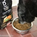 Pure Balance Dog Food.Rocky