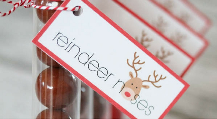 Reindeer Noses - 100 Days of Homemade Holiday Inspiration ...