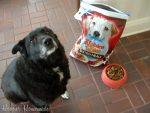 Kibbles 'n Bits Bistro Dog Food #ILoveMyDog