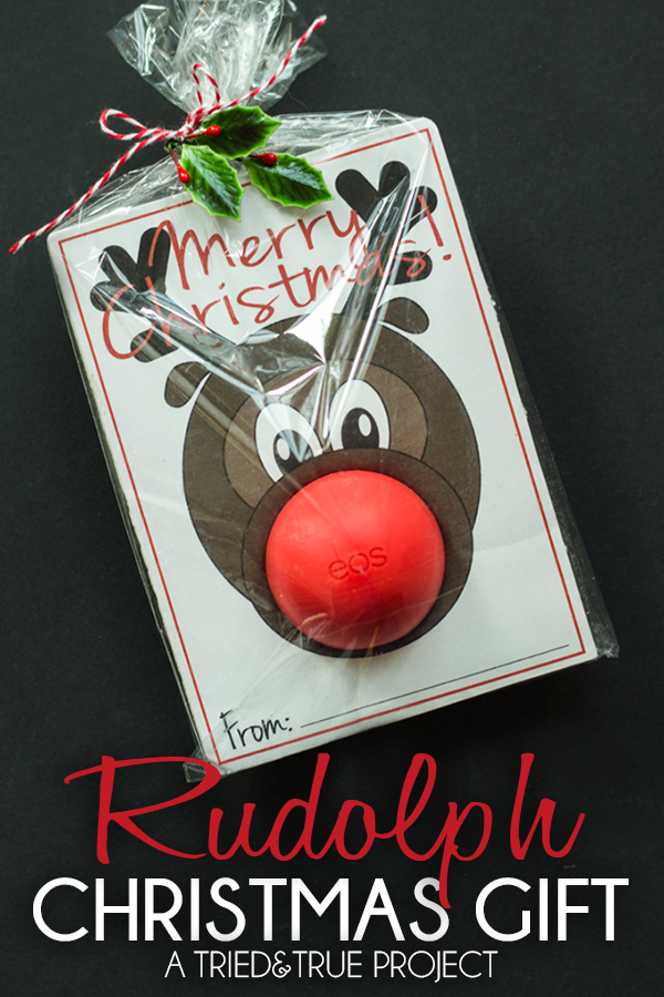 Perfect for friends, co-workers, post man and more! This Rudolph Christmas Gift comes with a FREE Printable! Visit our 100 Days of Homemade Holiday Inspiration for more recipes, decorating ideas, crafts, homemade gift ideas and much more!