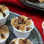 No Bake Mini S'Mores Cheesecake :: Recipe on HoosierHomemade.com