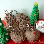 Santa & His Reindeer - December 2010
