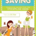 Savvy Saving Book