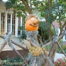 Scarecrow Pumpkin.1