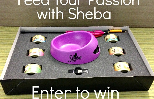 Feed Your Passion with Sheba Giveaway