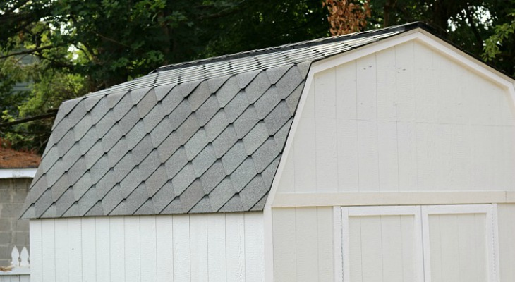 Shed-Roof.shingles.FEATURE