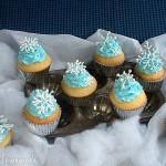 Snowflake Cupcakes - January 2011