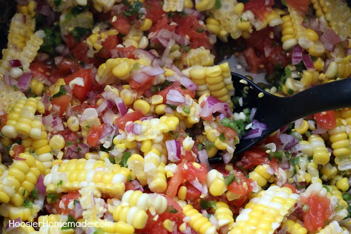 corn salsa fire roasted corn salsa appetizer recipe spicy corn salsa ...