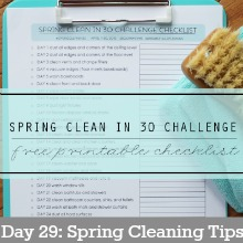 Spring-Clean-Day29