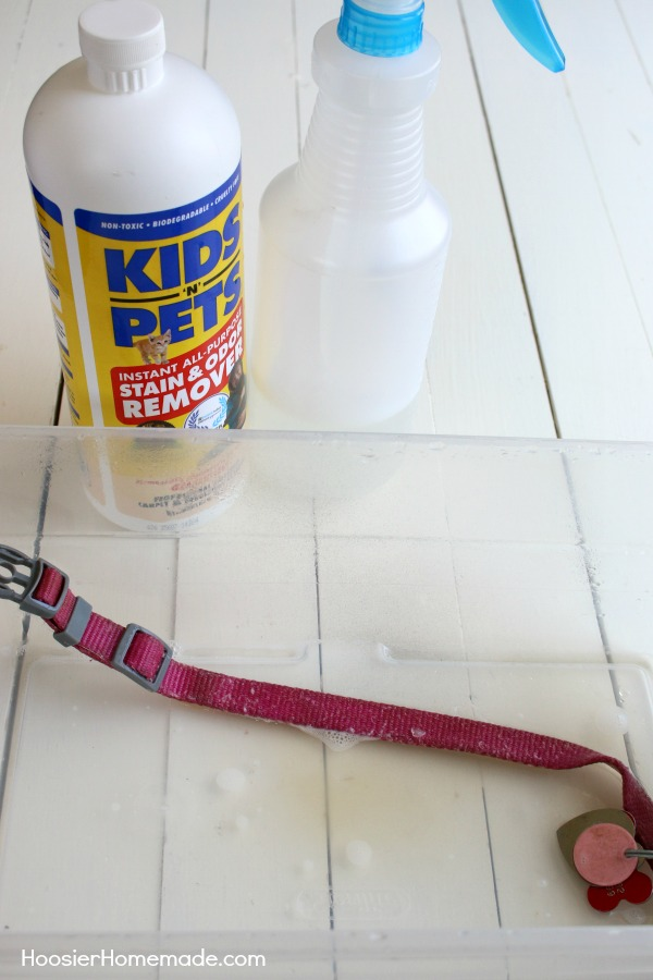 SPRING CLEANING TIPS FOR THE PET OWNER