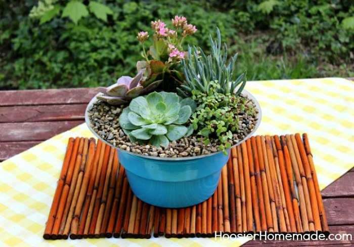 How to build and plant a succulent garden hoosier homemade - How to make a succulent container garden ...
