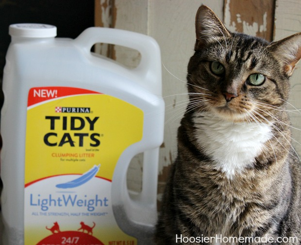 Tidy Cats LightWeight Litter