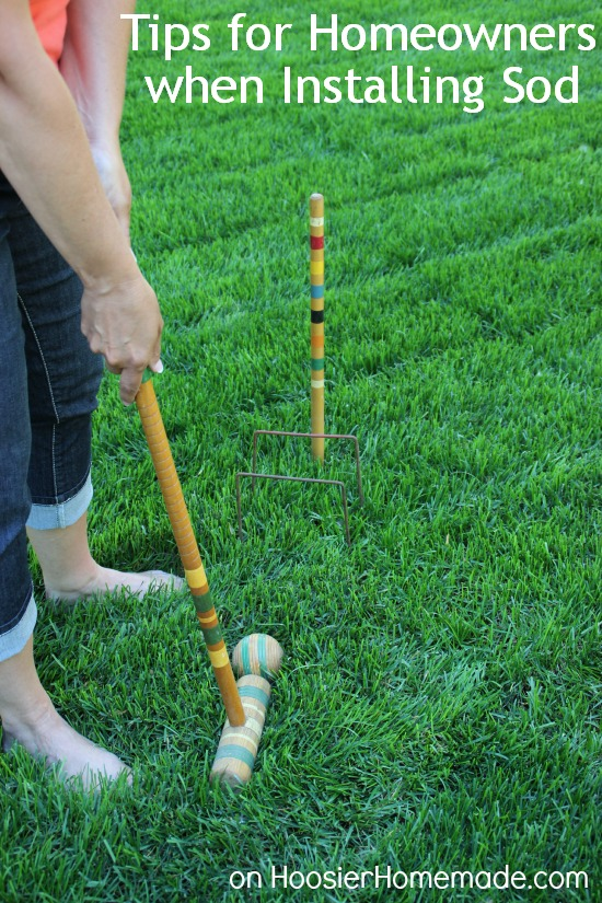 7 Tips For Homeowners When Installing Sod