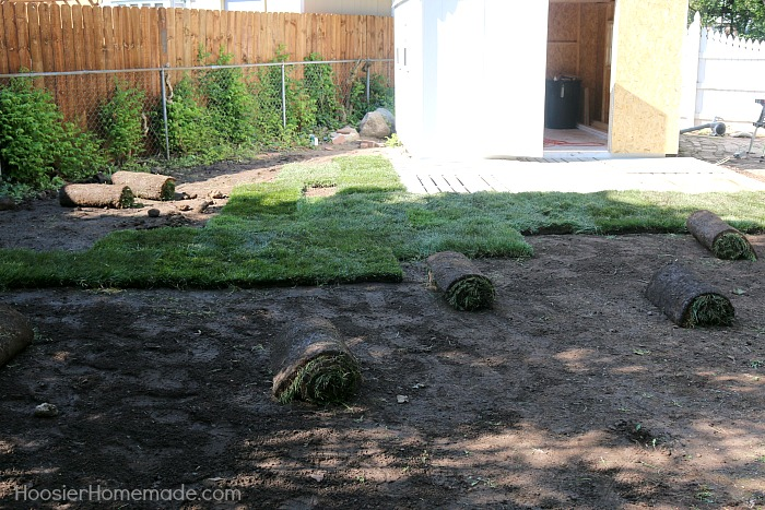 TIPS FOR LAYING SOD - Creating a gorgeous green lawn is easier than you think! Upgrade your lawn quickly and easily! Learn how to lay sod yourself!