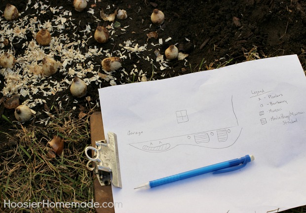Planting Flowering Bulbs for Spring: Learn how on HoosierHomemade.com