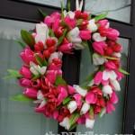 Tulip Spring Door Wreath