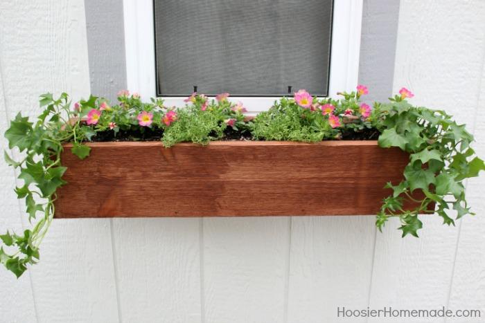 WINDOW BOX -- How to Plant a Window Box