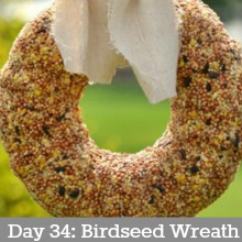 birdseed-wreath-day 34