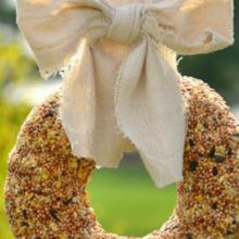 birdseed-wreath-feature