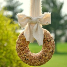 birdseed-wreath.220