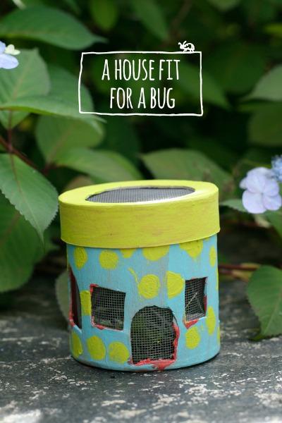 How to Make a Bug House