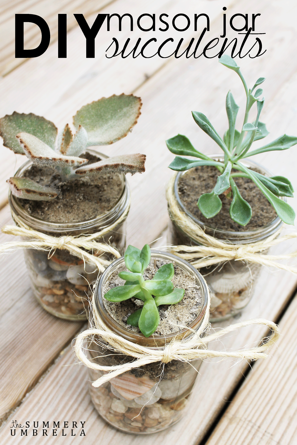 Diy mason jar succulents 100 days of homemade holiday for Home decorating gift ideas