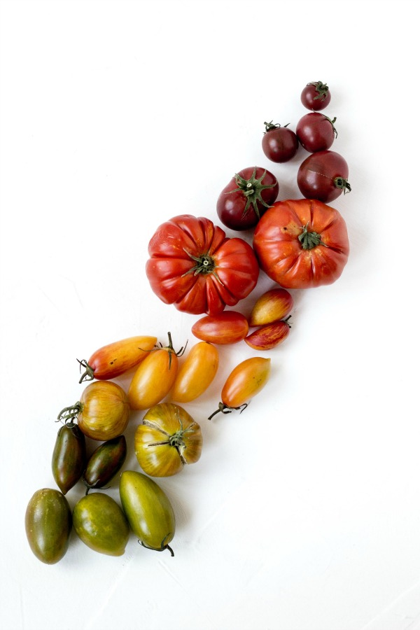 Various Heirloom Tomatoes in colors ranging from green, yellow,red and purple