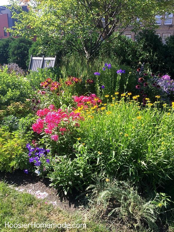 Garden calendar for august hoosier homemade for Better homes and gardens test garden