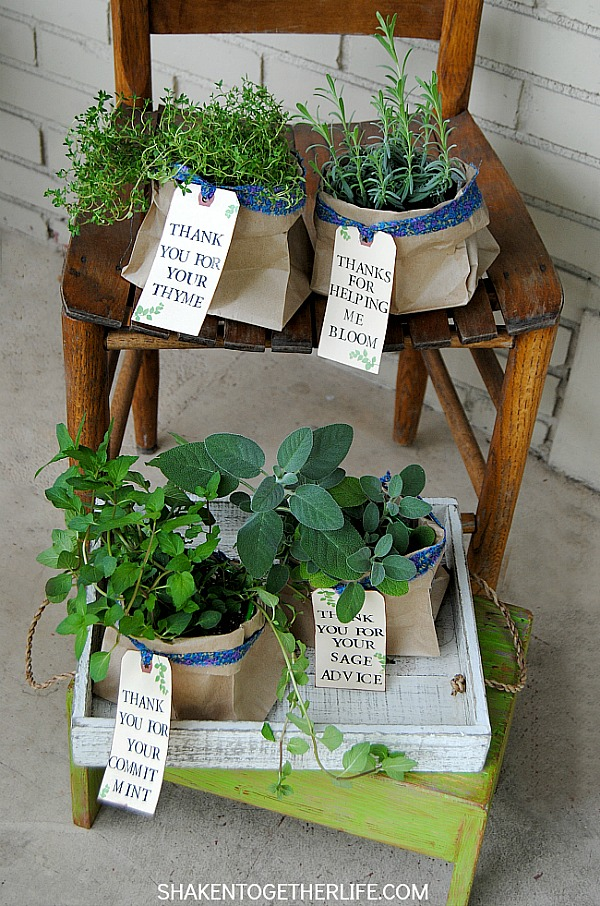 thank-you-herb-gifts-chair